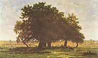Holm Oaks, Apremont, 1852, rousseautheodore