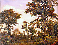The Large Oak Tree, Forest of Fontainebleau, 1839, rousseautheodore