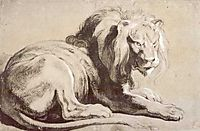 Etude of lion, c.1620, rubens