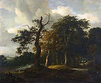 A Road through an Oak Wood, ruisdael