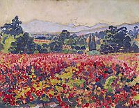 The vines in Saint Clair, 1912, rysselberghe