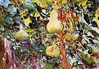 Gourds, 1908, sargent