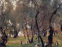 The Olive Grove, c.1908, sargent