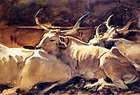 Oxen in Repose, 1910, sargent