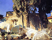 Oxen Resting, 1910, sargent