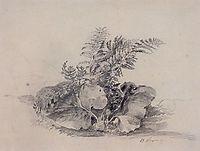 Fern leaves and burdock, 1854, savrasov
