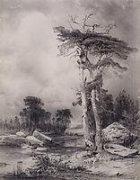 Old pine, 1854, savrasov