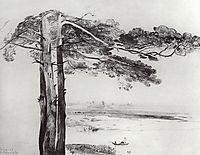 Pine from Gusareva, c.1850, savrasov