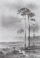 Pine in marsh, 1882, savrasov