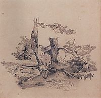 Pines, adjacent to the root of the barrel, 1854, savrasov