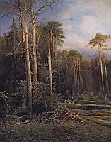 The road in the woods, 1871, savrasov