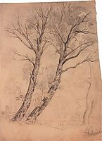 Trees, c.1850, savrasov