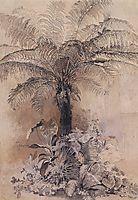 Tropical plants, 1854, savrasov