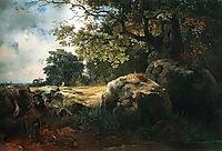 View in the Neighbourhood of Oranienbaum, 1854, savrasov