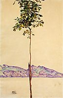 Little Tree (Chestnut Tree at Lake Constance), 1912, schiele