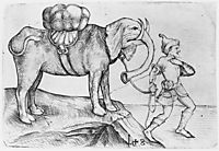 The elephant and his trainer, schongauer