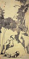 Lotus and Birds, shanren