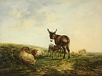 Donkey and Sheep, shayer
