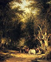In The New Forest, shayer