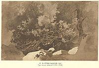 Mangyshlak garden, 1852, shevchenko
