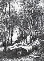At the edge of a birch grove. Valaam, 1860, shishkin