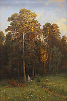 At the edge of a pine forest, 1882, shishkin