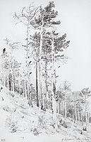At the top of the Ai-Petri, 1879, shishkin