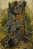 The bark on the dry trunk, 1890, shishkin