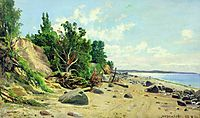 Beach, 1890, shishkin