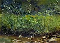 Beach of Pond, shishkin