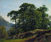 Beech Forest in Switzerland, 1863, shishkin