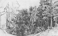 Deciduous Forest, 1873, shishkin