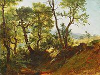 Edge of the Forest , 1866, shishkin