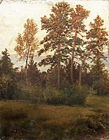 Edge of the Forest , 1892, shishkin