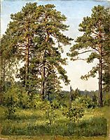 Edge of the pine forest, shishkin