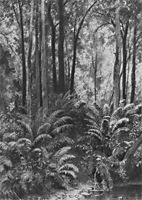 Ferns in the forest, 1877, shishkin