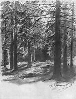 Fir in sunlight, shishkin