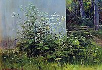 Flowers at the fence, shishkin