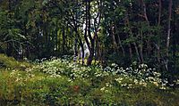 Flowers on the forest edge, 1893, shishkin