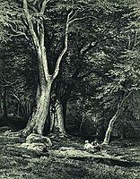 Forest, 1869, shishkin
