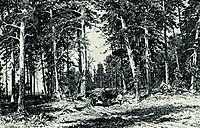Forest, 1876, shishkin