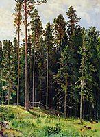 Forest, 1892, shishkin