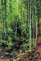 Forest-aspen, 1896, shishkin