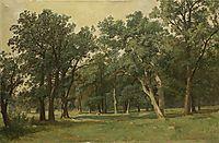 Forest Glade , 1889, shishkin