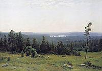 The Forest Horizons, 1884, shishkin