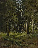 Forest Landscape, 1878, shishkin