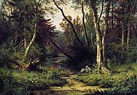Forest Landscape with Herons, 1870, shishkin