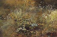 Grass, 1892, shishkin