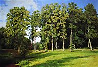 Grove by the Pond. Preobrazhenskoye, 1896, shishkin