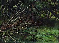 In the fir forest, shishkin